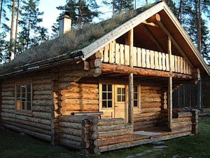 unique log cabin home design